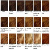 Image for Honey Brown Hair Color Chart Dark chocolate brown with dark brown base