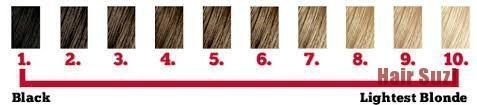 the hair color chart level 1 being the darkest to level 10 being the lightes sha…